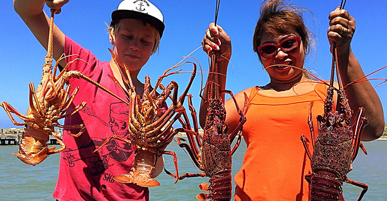 Catching Crayfish in Kalbarri WA